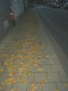 Herbst in Darmstadt